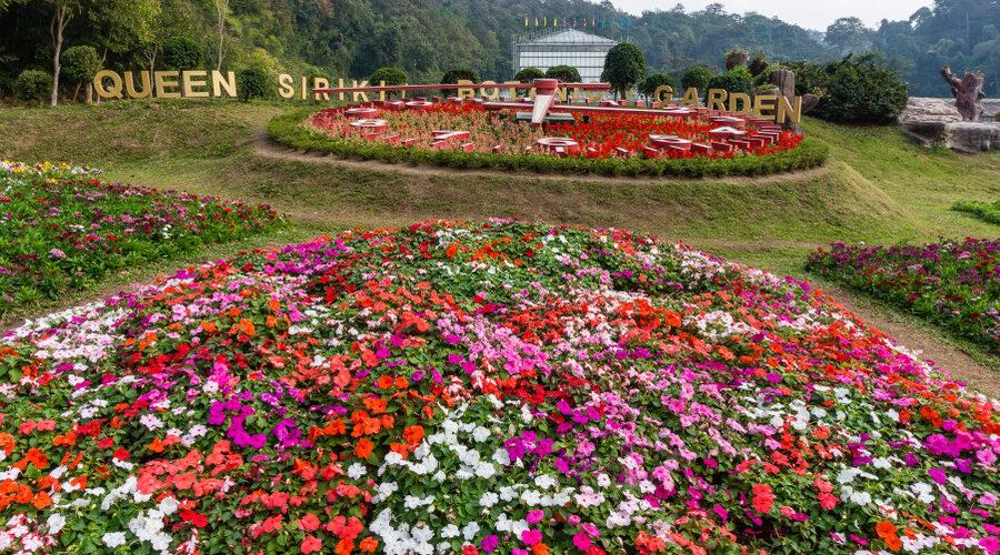 queen sirinkit botanical garden