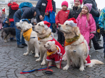 Tampereen joulunavaus 2016