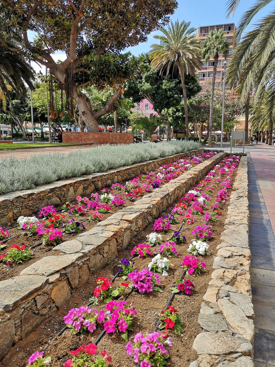 Santa Catalinan puisto
