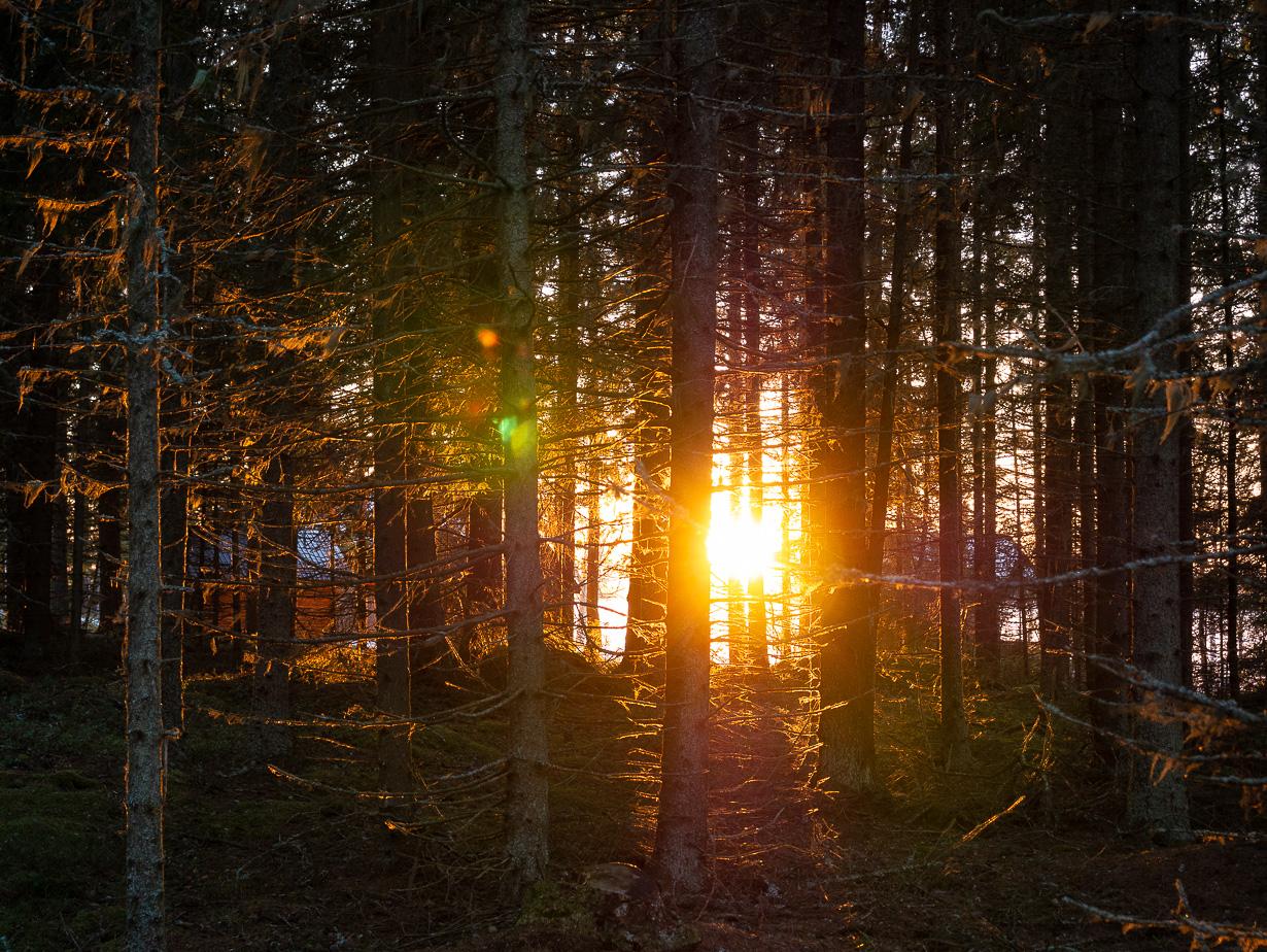 Kesämökki, Letto, Himanka