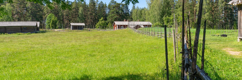 Liesjärven kansallispuisto, Tammela