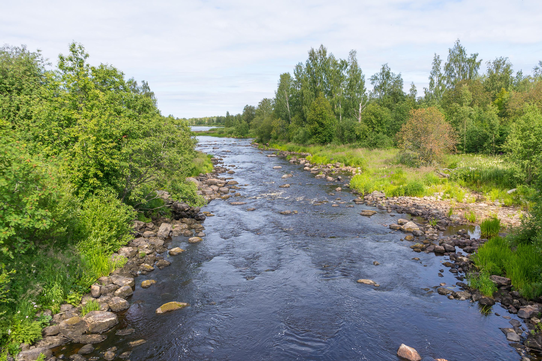 Lestinjoki, Himanka