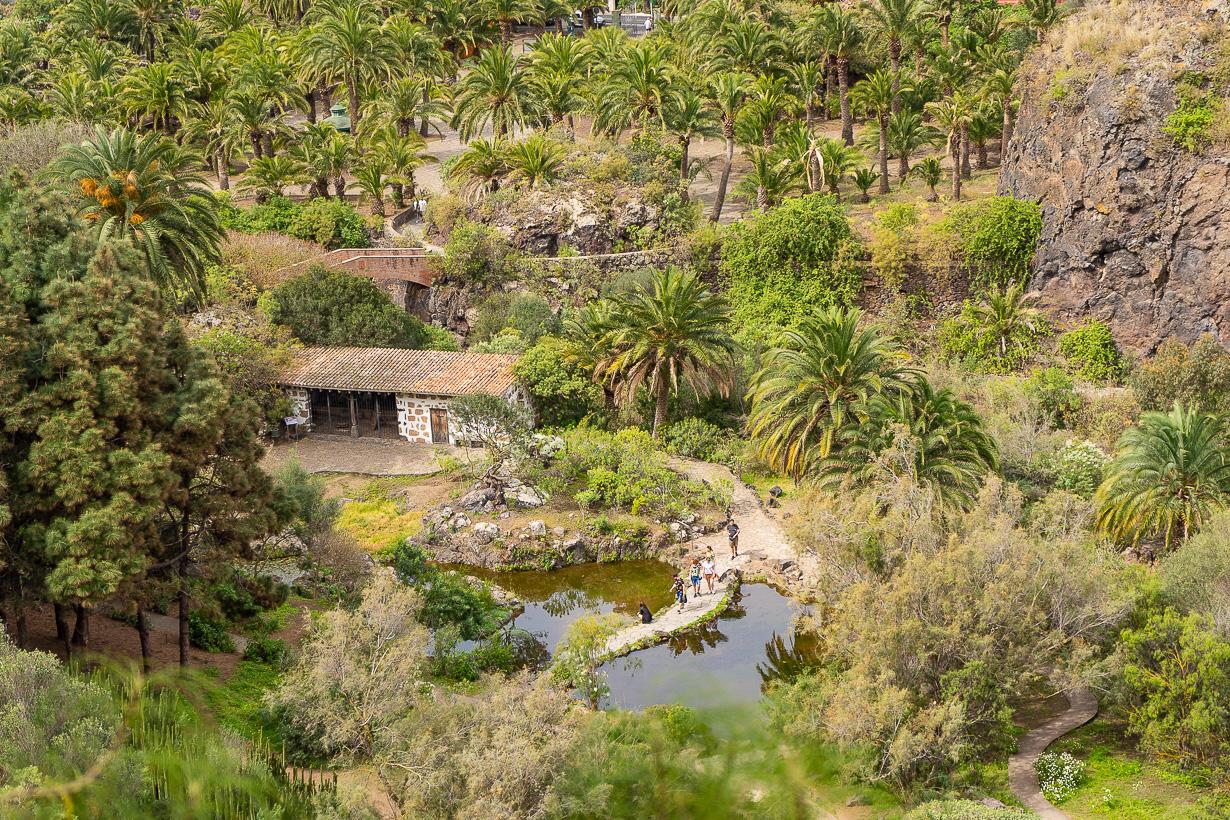 Kasvitieteellinen puutarha Viera y Clavijo, Gran Canaria, lampi ja talli