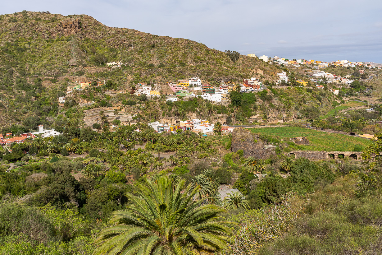 Kasvitieteellinen puutarha Viera y Clavijo, Gran Canaria