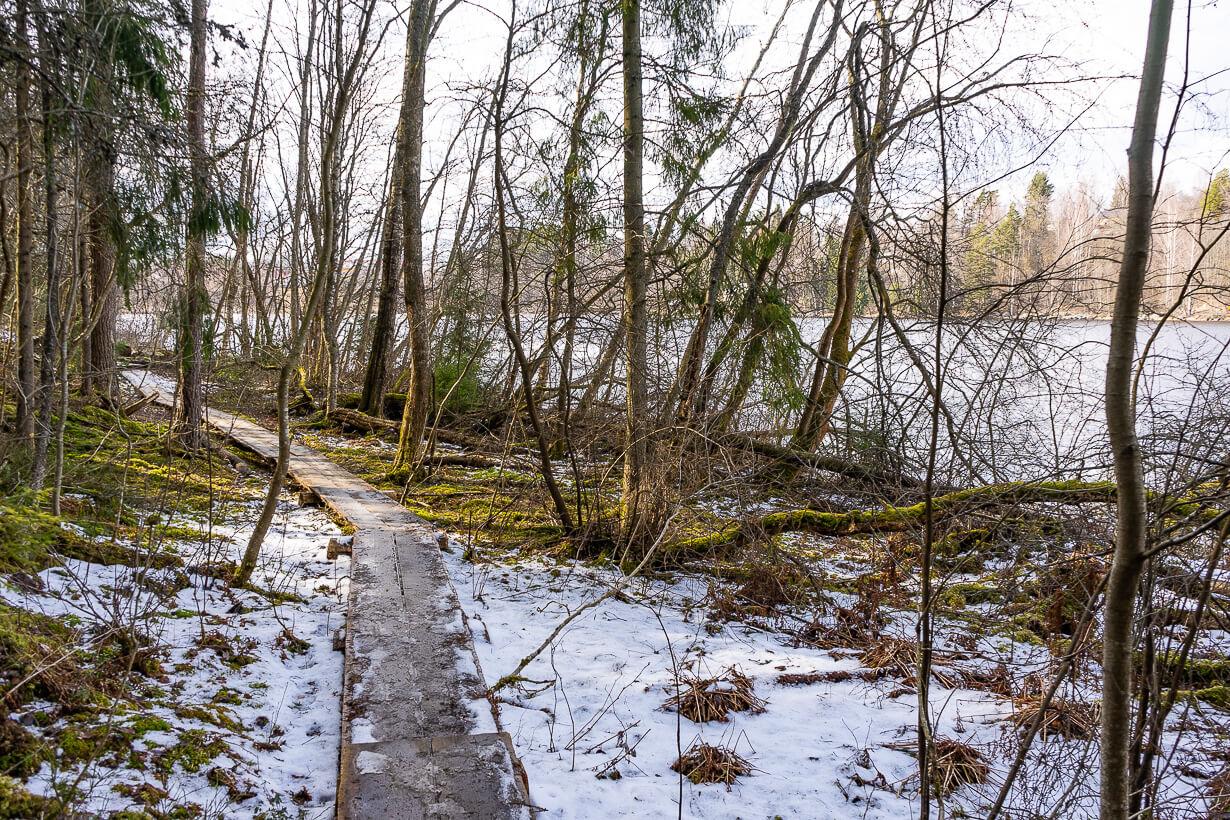 Pitkospuut Vihnusjärven rannalla Nokialla