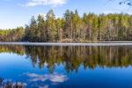 Kivikeskun luontopolku ja Kivikeskujärven kierto, Nokia