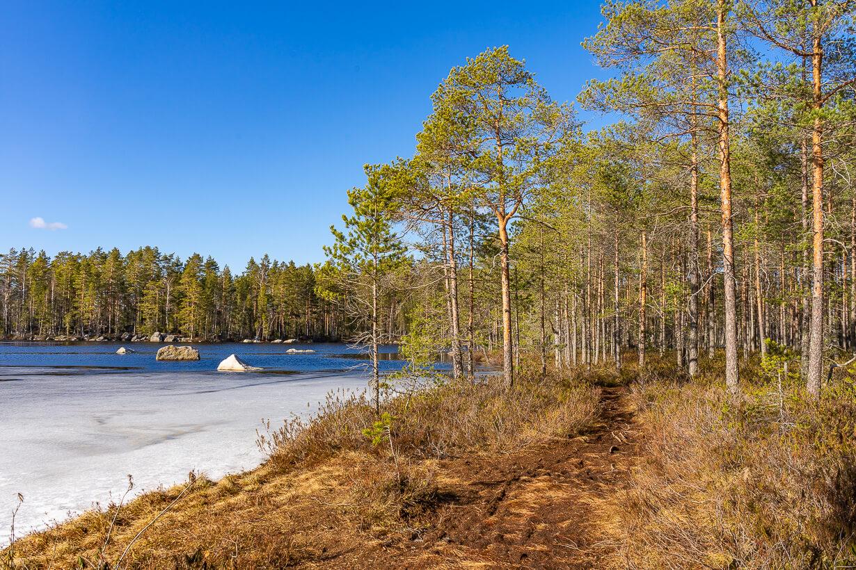 Kivikeskujärven luontopolku, Nokia
