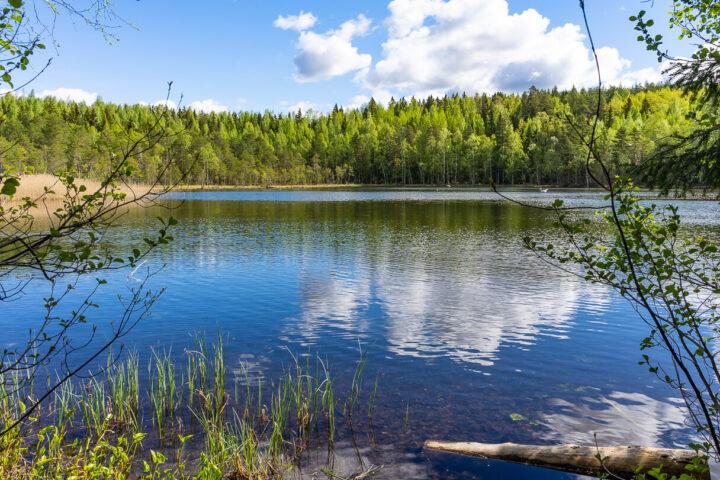 Kaunis Suolijärvi Tampereen Hervannassa