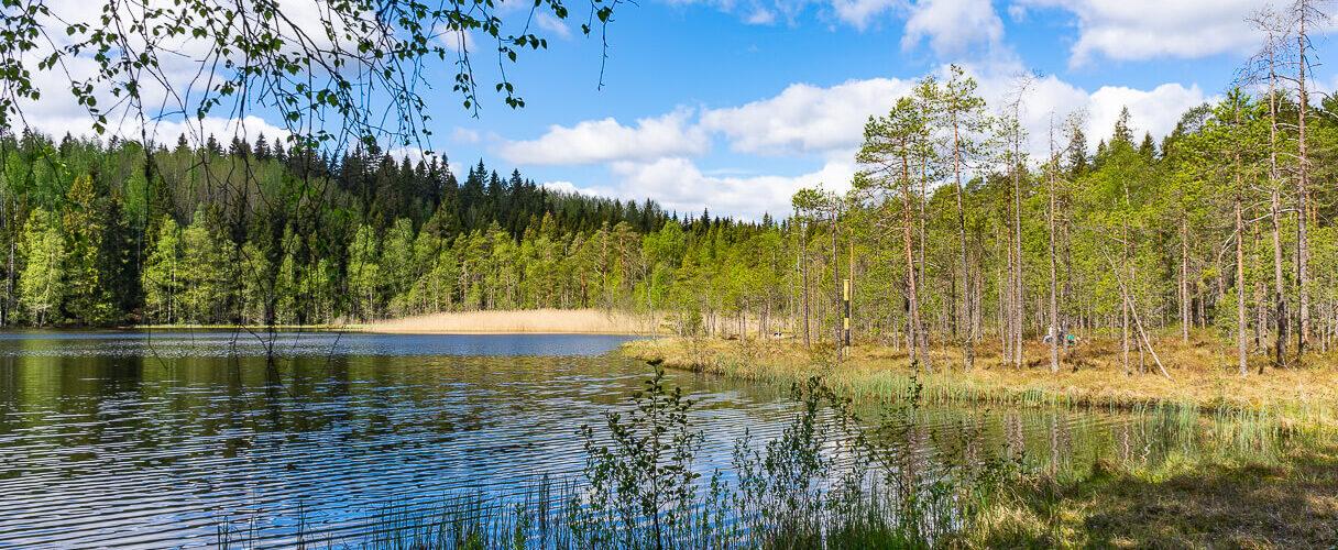 Suolijärven Uimaranta