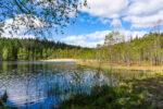 Suolijärven luontopolku, Tampere