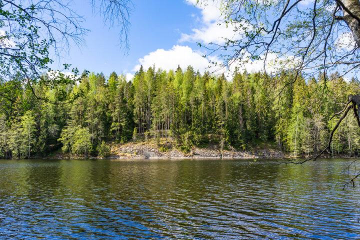 Hervannan Suolijärvi