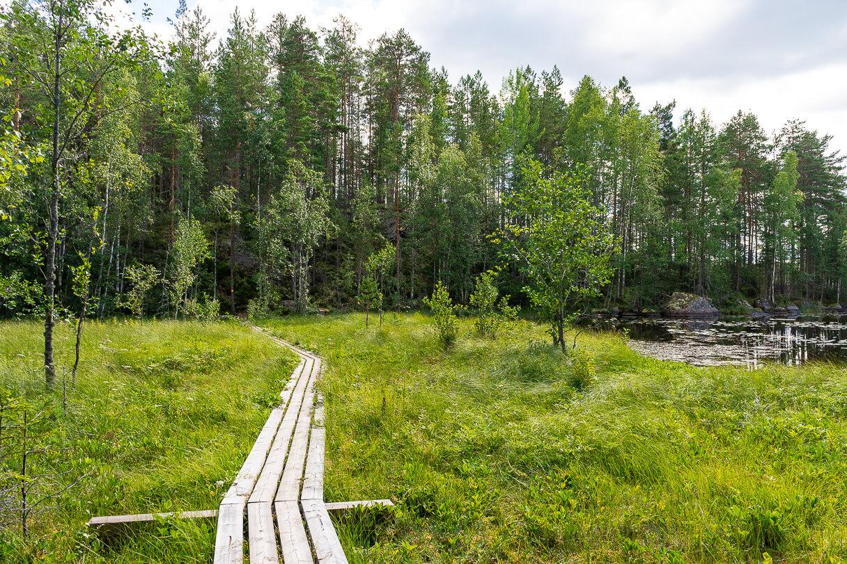 Pitkospuut, Alinen Ritajärvi, Ritajärven luonnonsuojelualue, Sastamala
