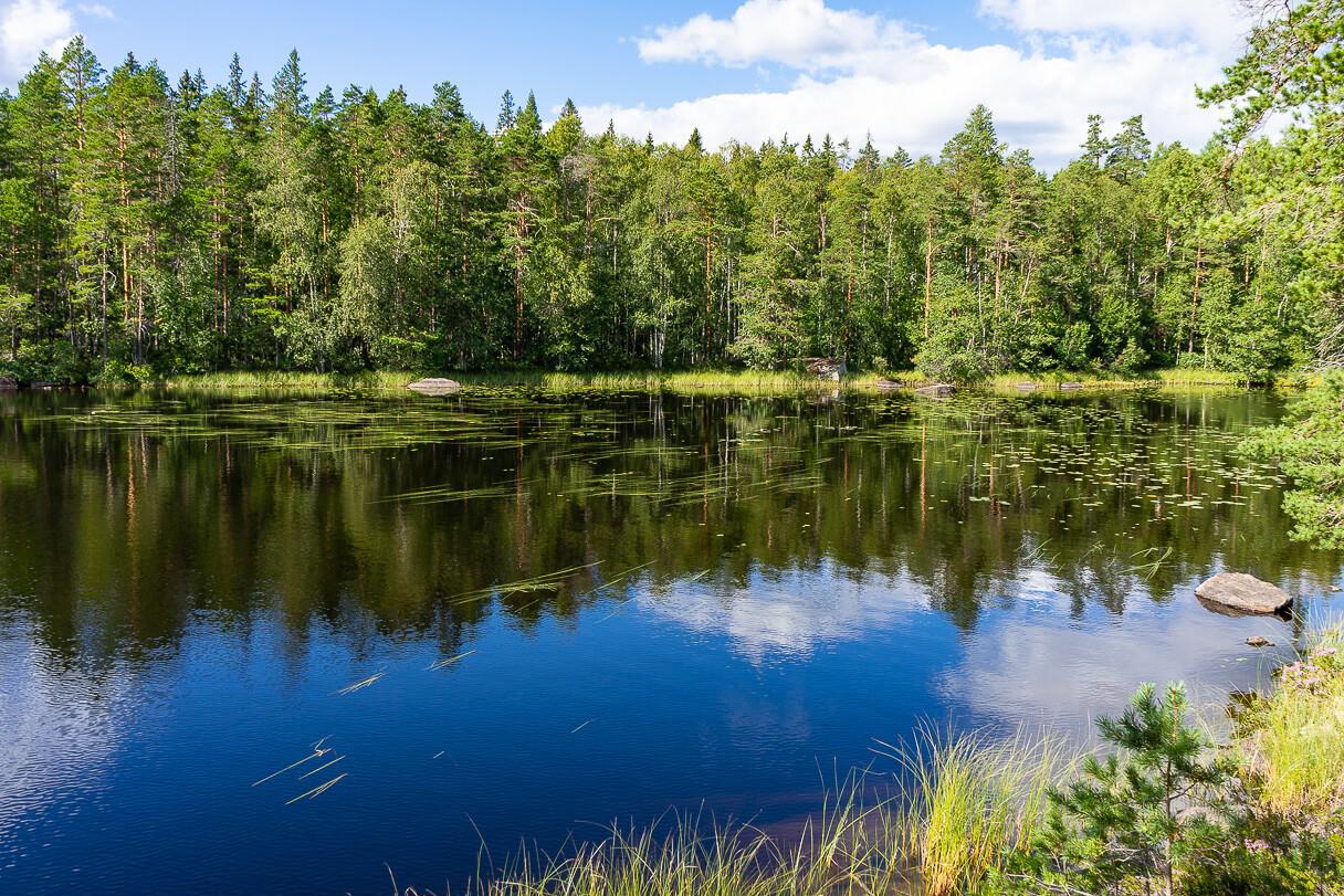 Alinen Ritajärvi, Ritajärven luonnonsuojelualue, Sastamala