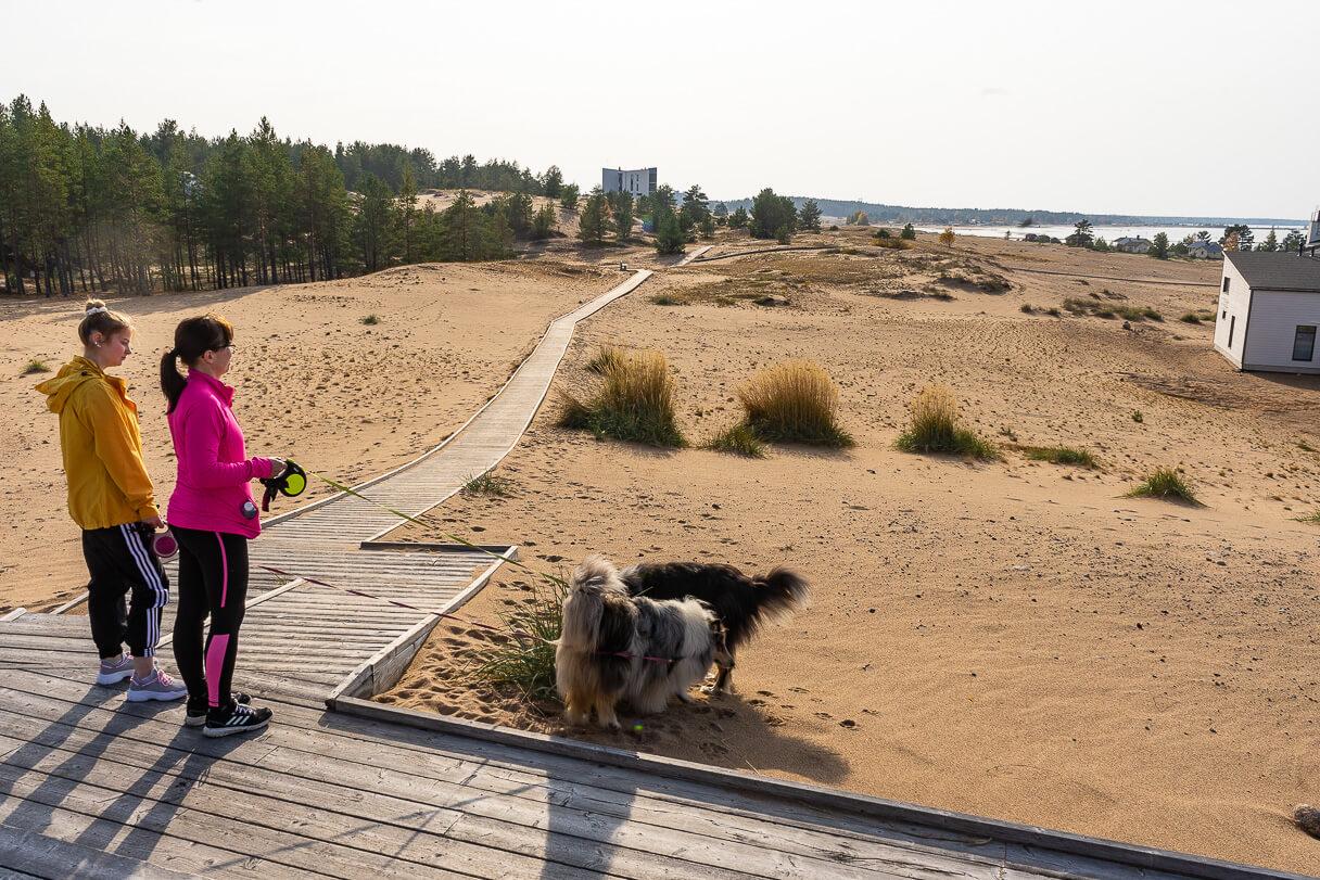 Kalajoen hiekkkasärkkien näköalapaikka.