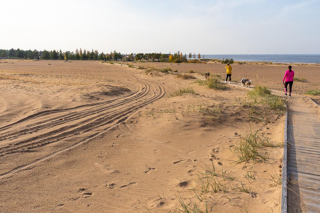 Mönkijän jäljet Kalajoen hiekkasärkillä