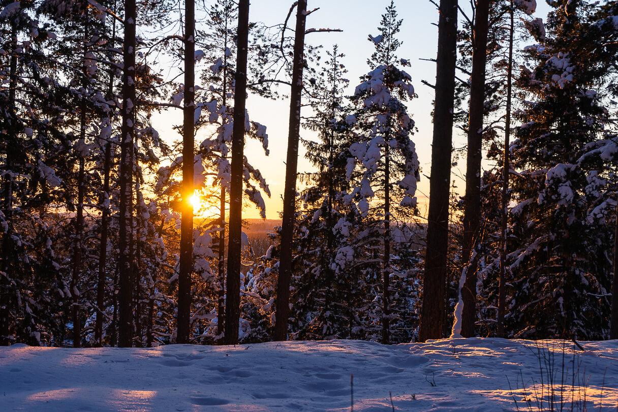 Talvinen auringonlasku Kangasalan Kirkkoharjulla